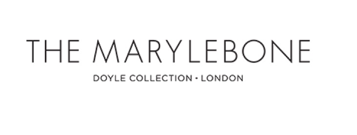 the-marylebone-doyle-collection-log